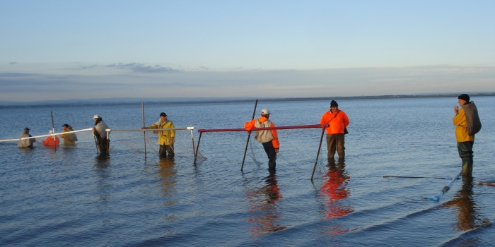 Haaf Net Fishing in Cumbria credit Annette Gibbons